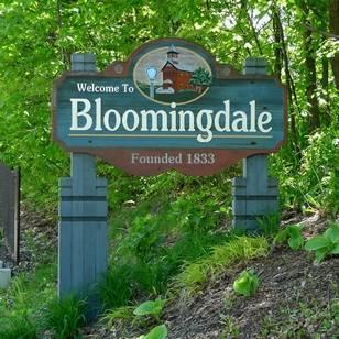 Medium bloomingdale