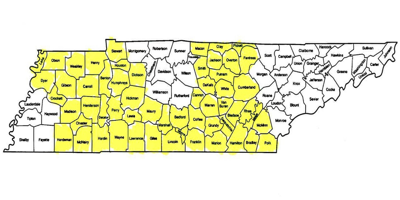 Map with highlighted Tennessee counties expected to have only one health insurance provider on the state's ACA Marketplace Exchange in 2017.