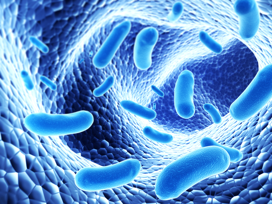 impact of microorganisms research Impact scientific technical research engineering and modeling support (streams): indoor biological contaminant research microbiology and gene sequencing research to combat black mold in building materials.