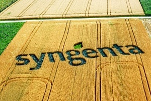 Syngenta's products to be introduced this year include three active ingredients that received registration in 2015.
