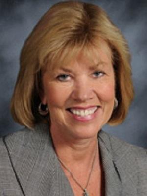 Illinois state Sen. Julie Morrison (D-Deerfield)