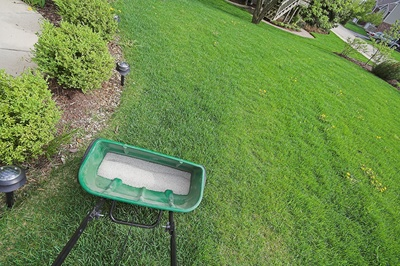 Fall is often the best time to fertilize your lawn.