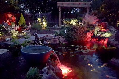 A living pond can help turn a backyard into an enchanting evening setting.