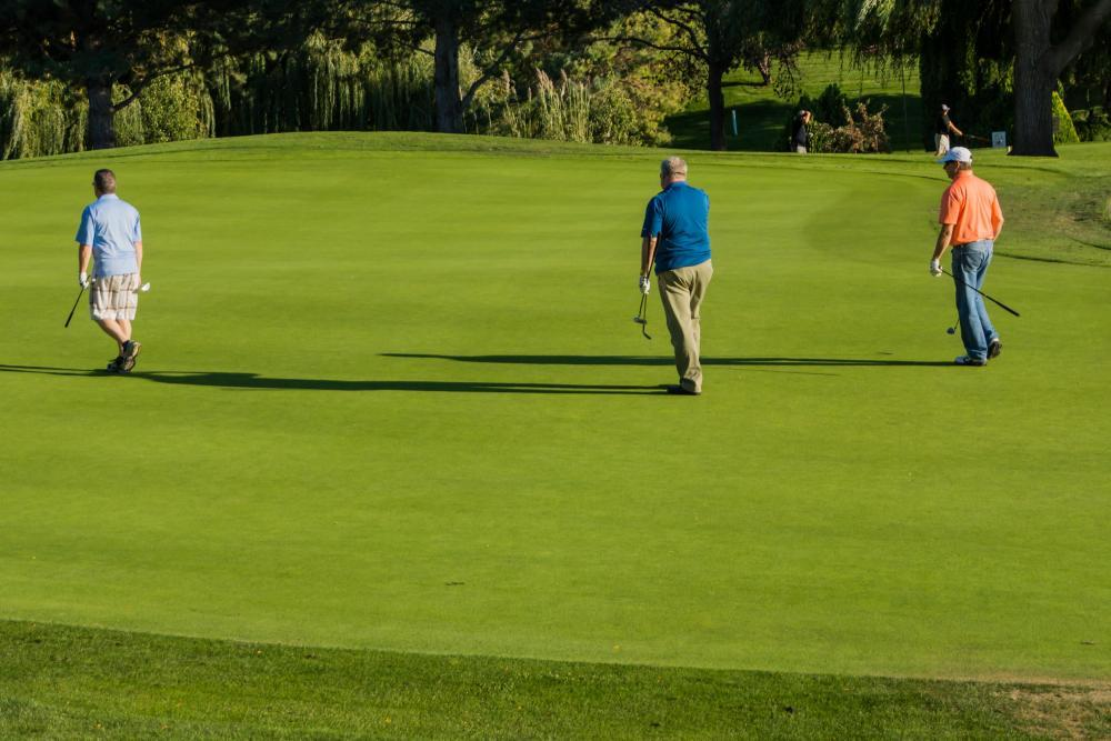 The council will purchase a new lawn aerofier for The Links Golf Course.