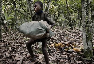 One labor project will prevent exploitative labor in the Latin American coffee industry.