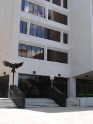 Large usdistrictcourteasterndistrictoflouisiana courthouse