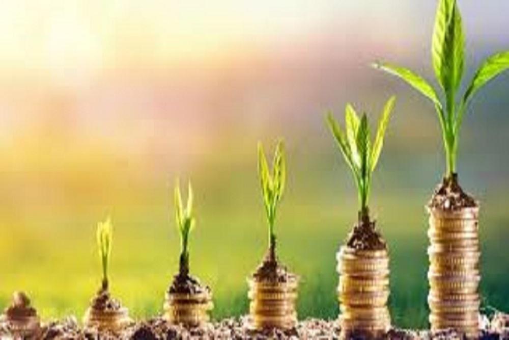 Investplant