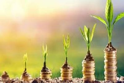 Medium investplant