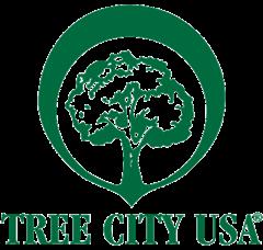 Medium treecity
