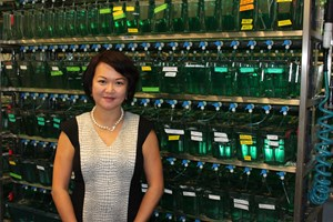 Joanne Chan, associate professor in biological sciences, leads a research project studying infectious disease.