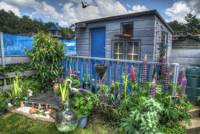 Garden sheds have become spaces that can be used for things other than tools and lawnmowers.
