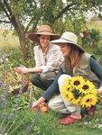 Sloggers Women's Wide Brim Braided Sun Hat with Wind Lanyard - Dark Brown - UPF 50+ Maximum Sun Protection