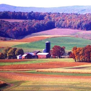 Schuylkill County farmer wins Pennsylvania Farm Bureau contest.