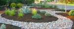 Take advantage of low-maintenance plantings for your project.