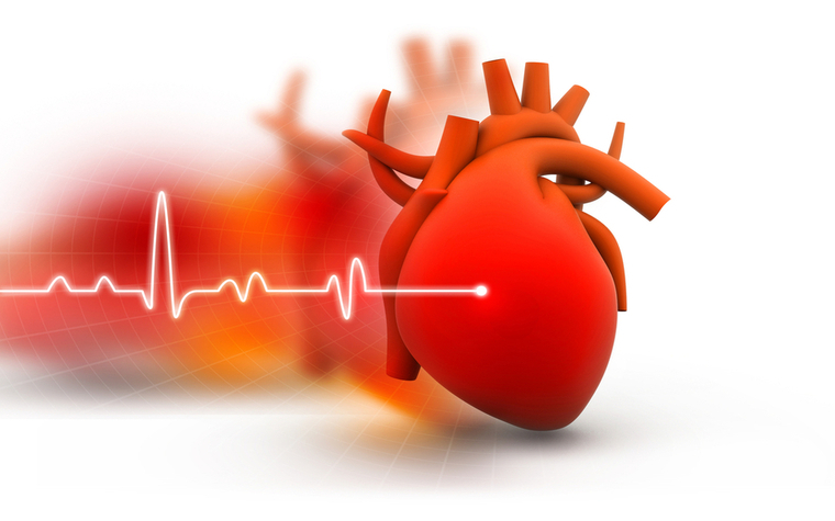 A recent AHA study has discovered many U.S. children are living with poor cardiovascular health.