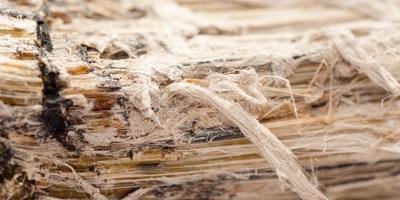 Medium asbestos 12