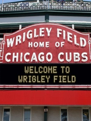 Large wrigleyfield
