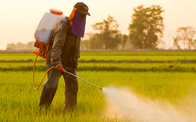 Large pesticidespray