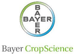 Medium bayer logo