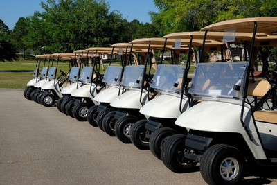 The company offers a variety of carts to choose from.