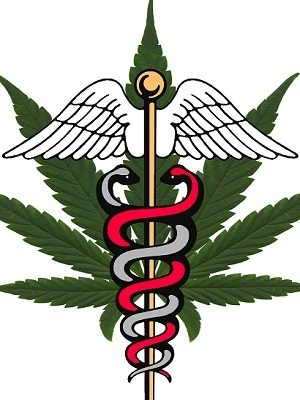 Large medical marijuana