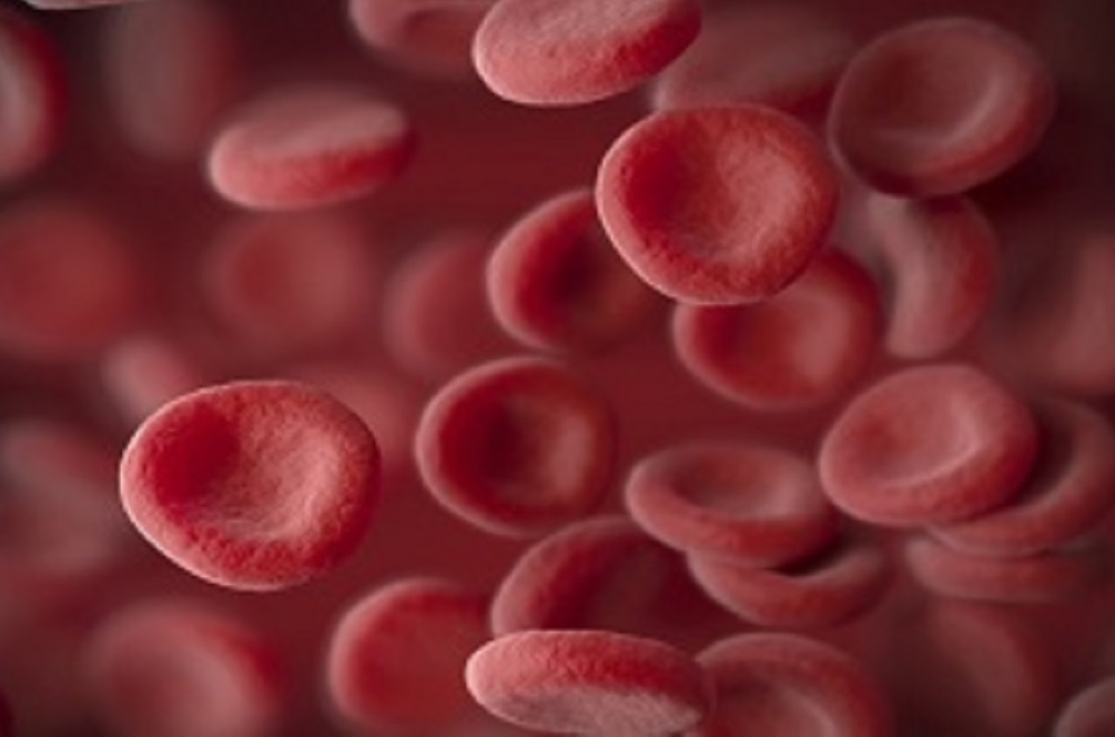Pfizer is seeking FDA approval for the drug to treat anemia stemming from a variety of issues.