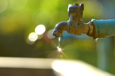 Gray water is repurposed water from your sinks, showers and appliances.