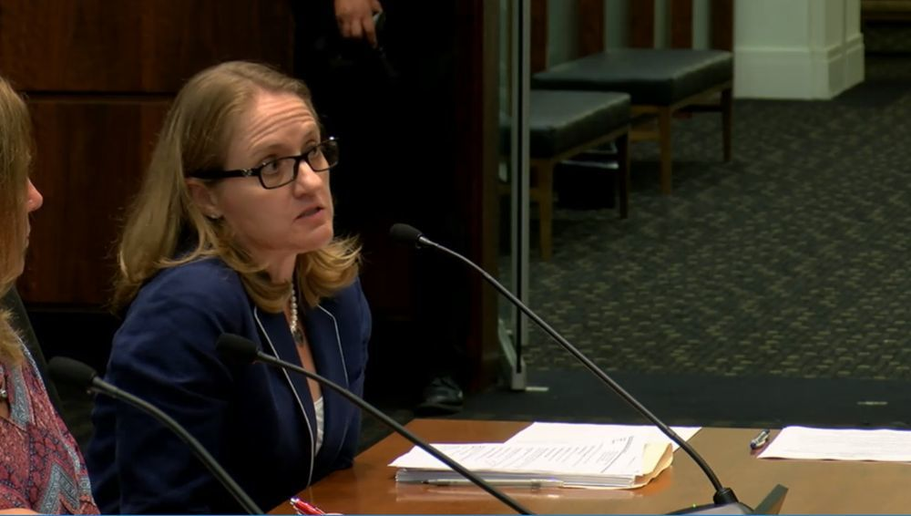 Danielle Gomez, a supervising attorney for the Cook County Office of Public Guardian, testifying before Senate Human Services Aug. 14