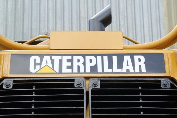 Large caterpillar2(1000)