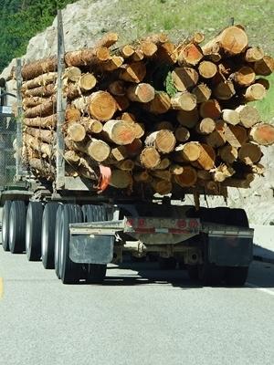 Large logging truck