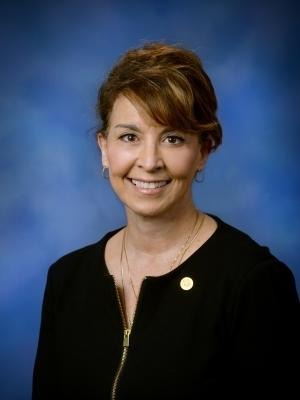 Rep. Lynn Afendoulis
