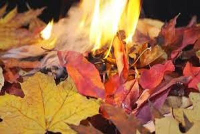 Medium leafburn