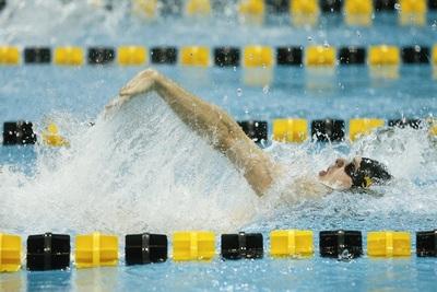 Medium swim