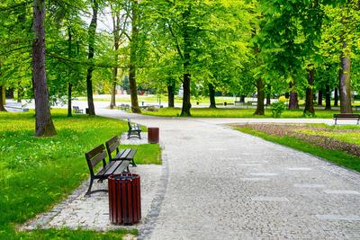 Medium park 13