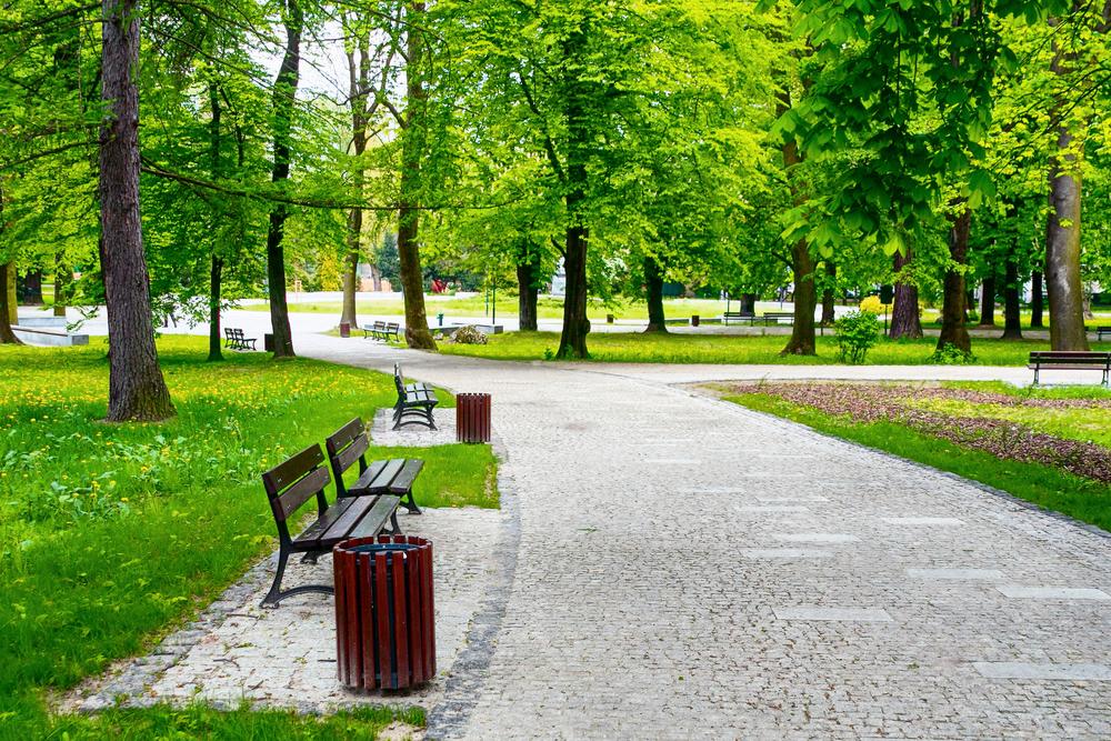 Park 13