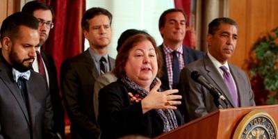 New York State Sen. Liz Krueger (D-Manhattan)