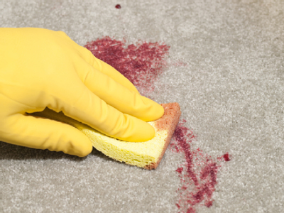 Careful cleaning habits can minimize stains in the carpet.