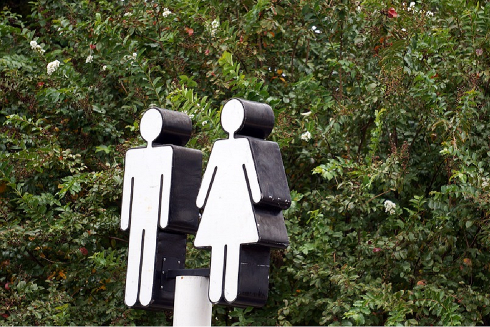 The proposed legislation says that transgender people cannot use restrooms of the gender they identify with in a public school, university or government building.