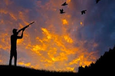 Medium hunting