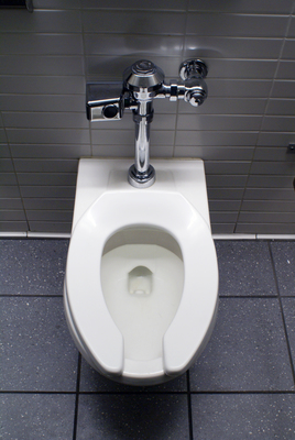 Low-water toilets offer a greener alternative to traditional water levels.