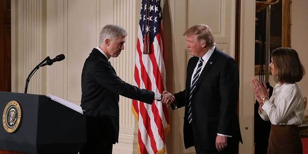 Large gorsuch