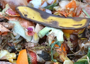 EPA, USDA announce inaugural U.S. Food Loss and Waste 2030 champions