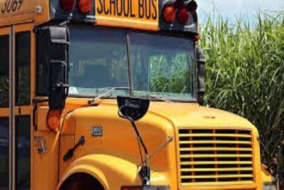 Medium schoolbus