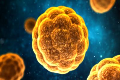 Medium hepatitisa