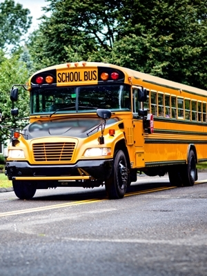 The district accepted a bid from Midwest Transit for a 2015 71-passenger International school bus for $81,020.
