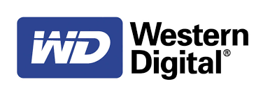 Lori Sundberg will lead important global human resources initiatives for Western Digital.