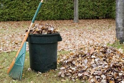 Medium curb it recycling st johns newfoundland yard waste