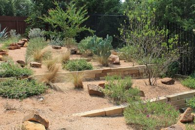 Xeriscapes can be developed in a variety of different styles.