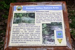 Sunset Valley Nature Area offers a pristine, green respite complete with environmental education material.