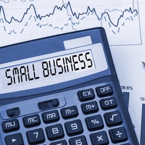Small business act clears House of Representatives.